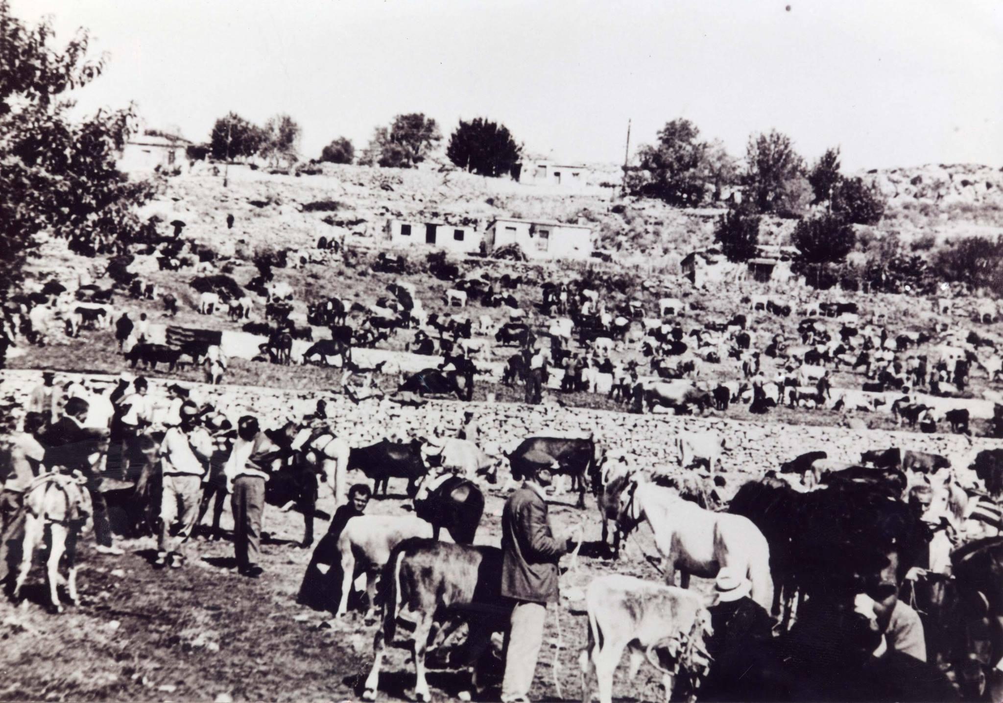 Ζωοπανήγυρη στο Θέρμο το 1958